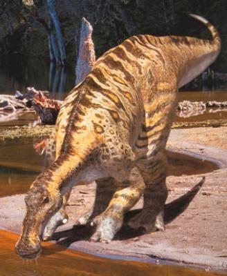 Hadrosaurs - Coming 2016