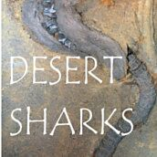 Desert Sharks By Mark Renz