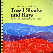 The Collector's Guide to Fossil Sharks and Rays  By  Welton & Farrish
