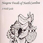 Neogene Fossils of North Carolina By Chandler & Timmerman