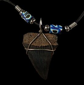 Megalodon shark tooth necklace for sale | Buried Treasure Fossils
