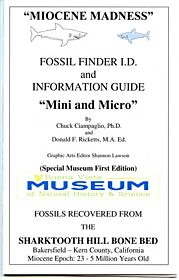 Sharktooth Hill Fossil Finder's Mini and Micro Teeth Guide By Chuck Ciampaglio & Donald Ricketts