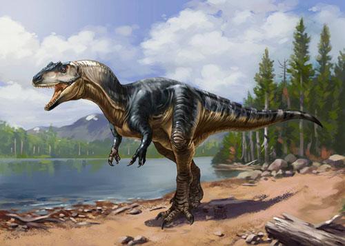 Tyrannosaurs - (T-Rex cousins)