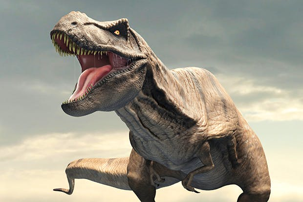 T-Rex - King of the Dinosaurs